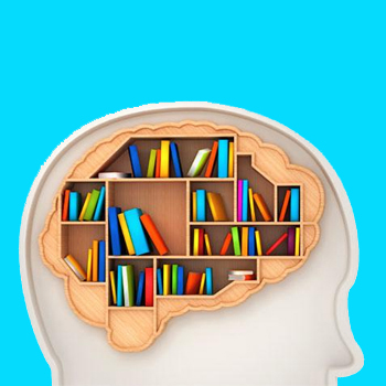 Памет - Психични процеси - iKant
