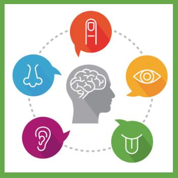 Възприятие - Психични процеси - iKant